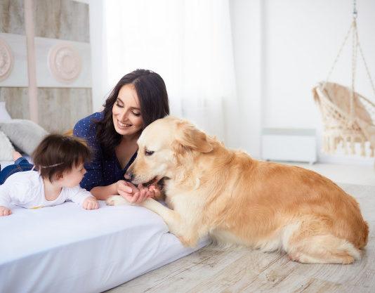 Niños y Mascotas